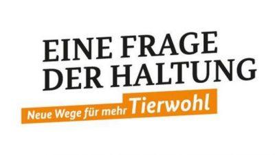 """""""Tierwohl in der Schweinehaltung"""" – Fachgespräch an der FH Soest"""